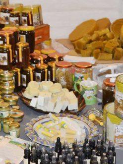Μελισσοκομικό σεμινάριο στο Τσεπέλοβο